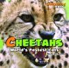 Go to record Cheetahs : world's fastest cats