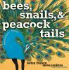 Go to record Bees, snails, & peacock tails : patterns and shapes-- natu...