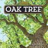 Go to record Oak tree