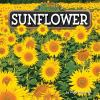 Go to record Sunflower