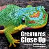 Go to record Creatures close up