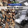 Go to record Wood to paper